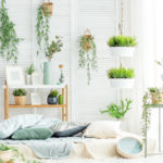How to Decorate with Plants - Plant Filled Room