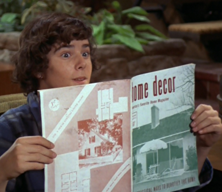Peter Reads A Home Decor Mag